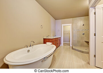 Great bathroom interior in brand new house.