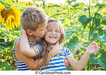 Girl and boy kissing among sunflowers - Girl and boy kissing...