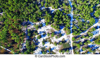 Cape San Blas, Florida. Beautiful aerial view