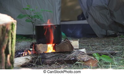 Cooking Food over a Campfire - Cooking food over a campfire...