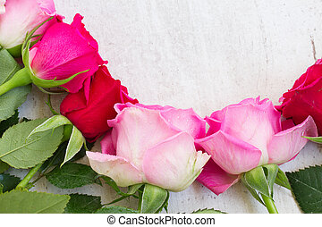 Pink fresh roses border on white agred wooden background...