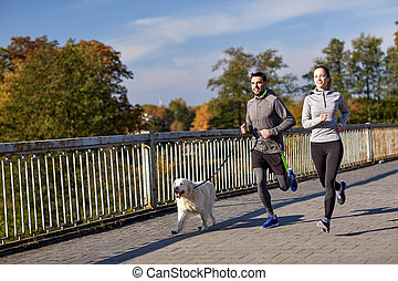 happy couple with dog running outdoors - fitness, sport,...