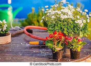 Flower Works in Home Garden. Gardening Theme.