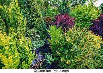 Residential Garden Closeup