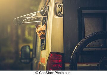 Motorhome Traveling with Pet - Motorhome Traveling with Dog....