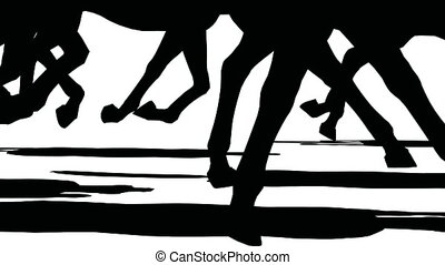 Close up of feet of herd of running horses, black silhouette on white background