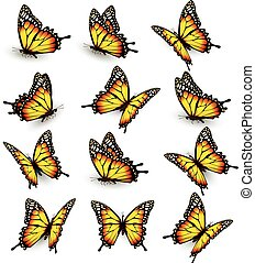Collection of yellow butterflies, flying in different...