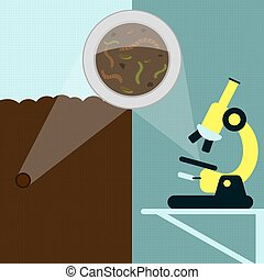 Earthworm, laboratory and field - Magnifying glass enlarging...