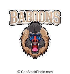 baboons banner illustration design colorful