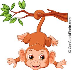 Cute monkey hangin on a tree