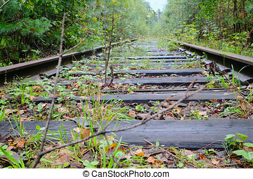 old overgrown railroad - old overgrown rail road passing...