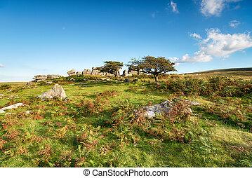 Combestone Tor near Hexworthy on Dartmoor in Devon