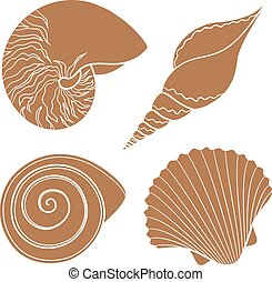 Set of graphic sea shells.