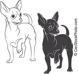 Vector drawing of a chihuahua. Isolated objects on a white...