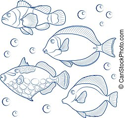 Collection of tropical reef fish. Vector illustration