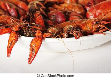 hervido, cangrejos de río