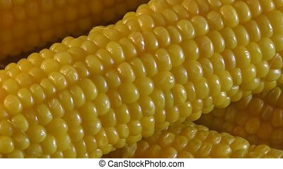 Boiled corn on the dinner table