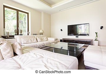 Lounge room making life luxurious - Luxurious living room...