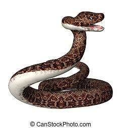 3D Rendering Rattlesnake on White - 3D rendering of a...