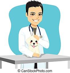Veterinarian Doctor Dog - Young veterinarian male doctor...