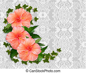 Hibiscus and lace Background - Hibiscus flowers Image and...