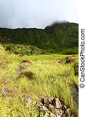 Mount Liamuiga - St Kitts - View of Mount Liamuiga from the...
