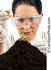 Agricultural scientist testing in laboratory