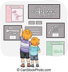Kids Boys Siblings Dinosaur Museum
