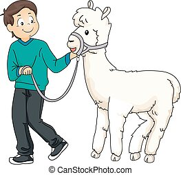 Kid Boy Pet Alpaca - Illustration of a Little Boy Walking...