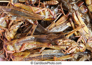 fried grasshopper,This local popular Thai food of northeast...