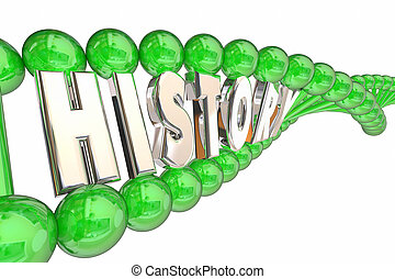 History Medical Ancestry Family DNA Traits 3d Illustration