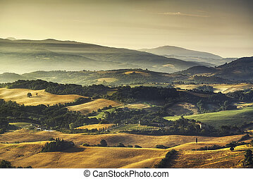 Tuscany Maremma foggy morning, farmlands and green fields....