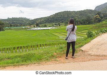 Asian women at green terraced rice field, Mae Klang Luang...