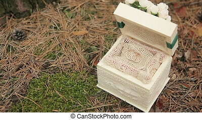 Wedding rings in a wooden box in the woods