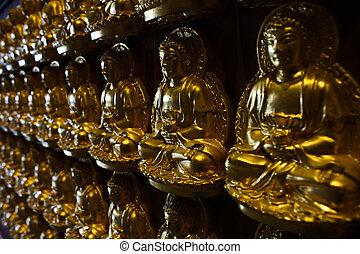 Thousand of Buddha