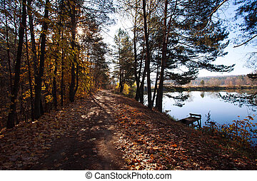 Road in woods by the lake on background of setting sun