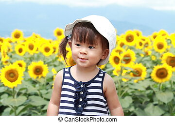 Japanese girl and sunflower field (1 year old)