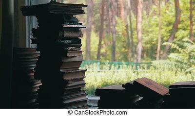 Stacks of Books Lying on a Window Sill on the Background...