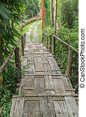Bamboo stair and concrete pathway