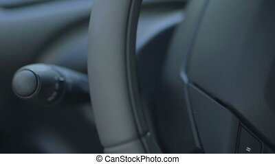 Sound audio control buttons on the steering wheel - Female...
