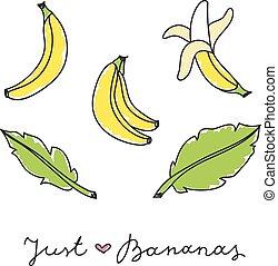 set of bananas - vector set of hand drawn bananas and leaves...