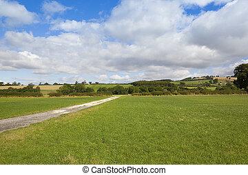 summer bridleway - a chalky bridleway with green farmland in...