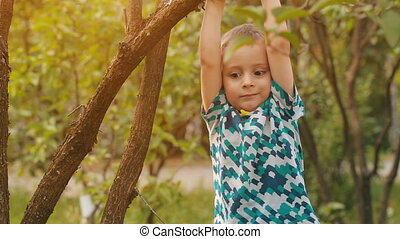 Boy hanging on a branch - Happy boy enjoying summer day in a...