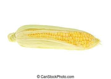 Sweetcorn isolated against a white background