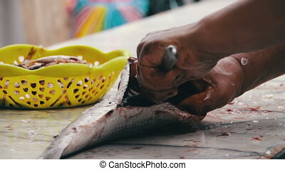 Gut Fish Cleans Fish Evisceration of fish Fresh fish...
