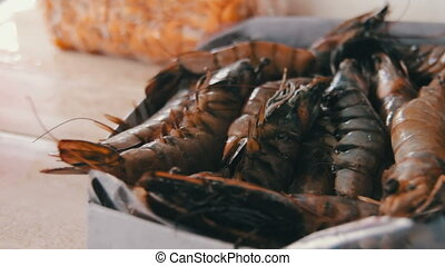 Seafood At The Fish Market - Fish market. Fresh sea fish in...