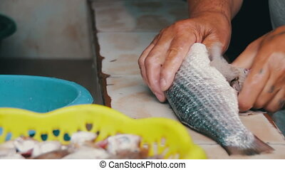 Gut fish. Cleans Fish. Fresh fish Processing.