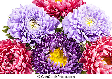 Bouquet of colorful aster flowers, close up