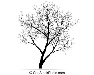 Dead Tree without Leaves Vector Illustration Sketched, EPS...