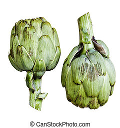 Artichokes - Two ripe artichokes isolated over white...